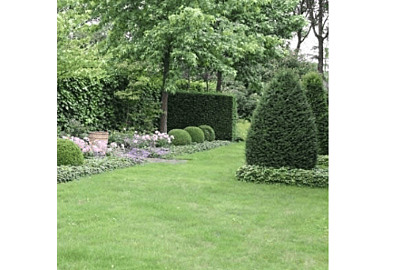 Een landelijke tuin aanleggen