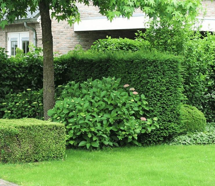 Eigen tuin ontwerpen