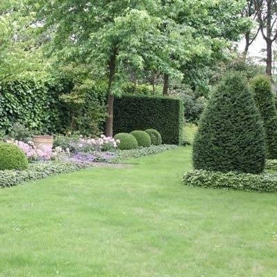 Onderhoud van de tuin